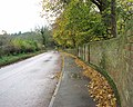 Wet leaves littering pavement - geograph.org.uk - 1593324.jpg