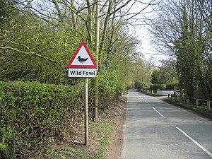 Icknield Street - Near Beoley.