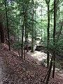 Winston County, AL, USA - panoramio (3).jpg