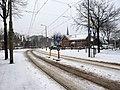 Winter Loosduinen 2021 2.jpg