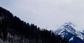 Winters in Tosh, Himachal Pradesh.jpg