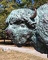 World's Fair Bison Sound of the Whoop Humboldt Park Chicago 2020-0664.jpg