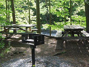 Forks Township, Sullivan County, Pennsylvania - Worlds End State Park picnic area