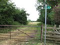 Yes, there are two paths you can go by ... - geograph.org.uk - 197707.jpg
