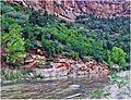 Zion NP, Sunrise, Virgen River 5-1-14ia (14167687709).jpg