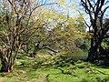Zoológico de Buenos Aires (3900054690).jpg