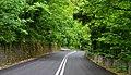 Πήλιο - Διαδρομή Μουρεσίου-Κισσού.jpg
