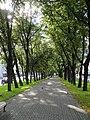 Бульвар Конногвардейский аллея.JPG