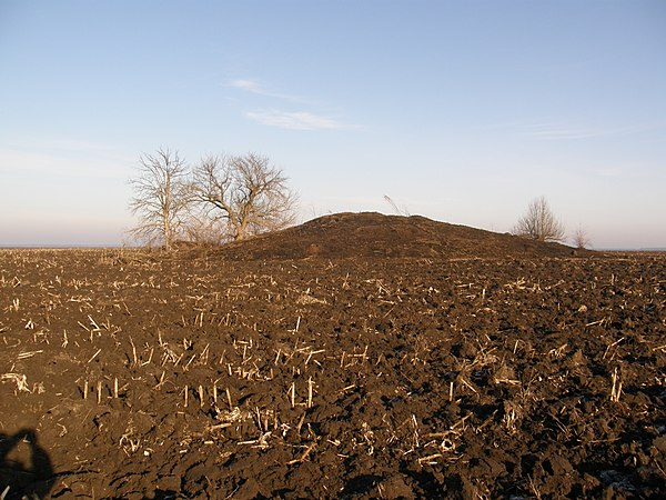 Кургани, село Веселівка, © Михайло Потупчик, ліцензія CC-BY-SA-4.0