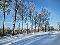 Кашин, Горсад - panoramio (40).jpg