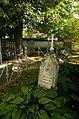 Одна из могил среди захоронений Толстых.jpg