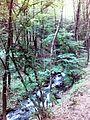 Смоларски водопад 31.jpg