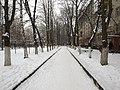 Снег - panoramio (1).jpg