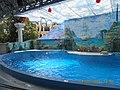 Сочинский дельфинарий парка «Ривьера». 27.jpg