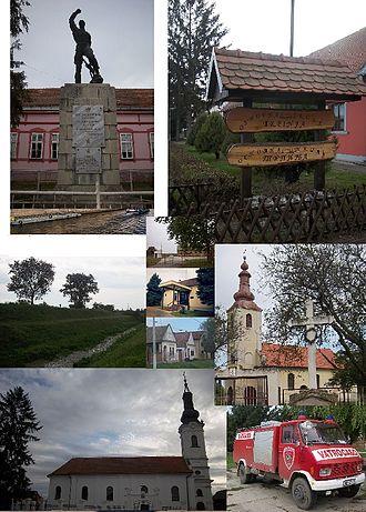 Trpinja - Image: ТРПИЊА