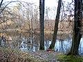 Украина, Киев - Голосеевский лес 229.JPG