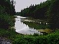 Уникальное озеро на Ижорской возвышенности.jpg
