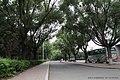 吉林大学南岭校区 campus - panoramio.jpg