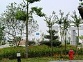 安徽省含山县玉龙公园景色 - panoramio.jpg