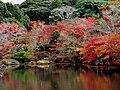 御船山楽園の紅葉 - panoramio (1).jpg