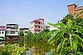 新洲旧貌Scenery in GhuangZhou, China - panoramio (3).jpg