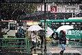 次のバスをご利用下さい。 関東バス株式会社 2016-11 (30906511200).jpg