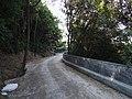 涌泉寺电瓶车道 - Electric Shuttle Road - 2014.07 - panoramio (1).jpg
