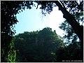 王子山森林公园 - panoramio (8).jpg