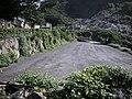行義路到陽明山健行 - panoramio - Tianmu peter (48).jpg