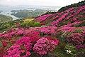 長串山公園 - panoramio.jpg