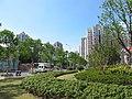 龙华东路上 - panoramio (2).jpg