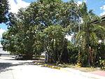 09768jfBinalonan Pangasinan Province Roads Highway Schools Landmarksfvf 02.JPG