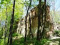 1.Добромильський замок.JPG