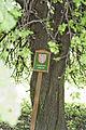 12 2012 Bystrice-pod-Hostynem pamatny-strom Regerova-hrusen-pod-Bartovcem.jpg