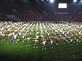 15. sokolský slet na stadionu Eden v roce 2012 (54).JPG