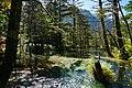 150920 Gakusawa wetlands Kamikochi Japan03s3.jpg