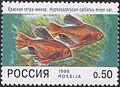 1998. Марка России 0425 hi.jpg