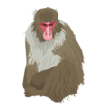 201412 Japanese monkey.png