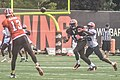 2016 Cleveland Browns Training Camp (28074865804).jpg