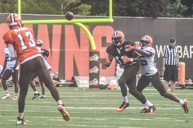 File:2016 Cleveland Browns Training Camp (28074865804).jpg