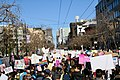 2018 San Francisco Women's March (9390).jpg