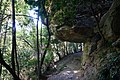 2019-04 Blue Mountains National Park 03.jpg
