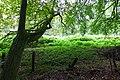 2019-09-28 Hike Stinderbachtal. Reader-27.jpg