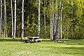2019 05 Riežupes dabas parks (3).jpg