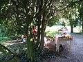 20 Zámek Veltrusy, kuchyňská zahrada.jpg