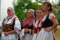 22.7.17 Jindrichuv Hradec and Folk Dance 097 (35971820901).jpg