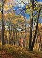 3 Ponds Trail (3) (15452771200).jpg