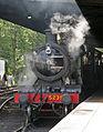 5239 Paignton (3).jpg
