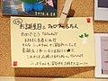 6th お誕生日&フォロワー6万人 (27510255469).jpg