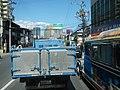 8366South Luzon Expressway Metro Manila Skyway Gil Puyat Avenue 21.jpg